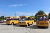 автобусы (6)
