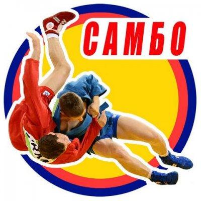 Увельские самбисты среди призеров Чемпионата и Первенства области  по борьбе самбо