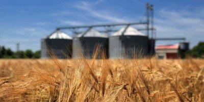 О сельскохозяйственной отрасли района – по результатам переписи населения