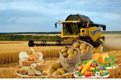 Борис Дубровский: Системная поддержка аграрного производства позволила Челябинской области стать крупнейшим производителем продуктов питания в стране